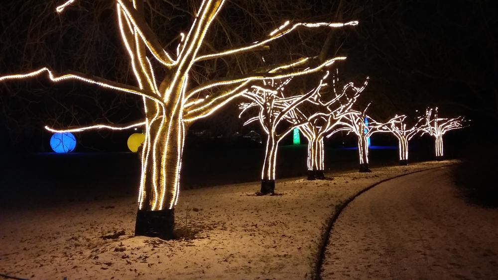 Christmas Garden - Allee der Kirschen