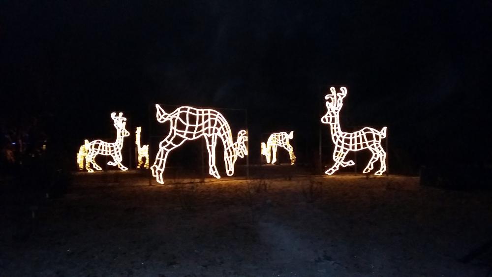 Christmas Garden – Rudolph und seine Freunde