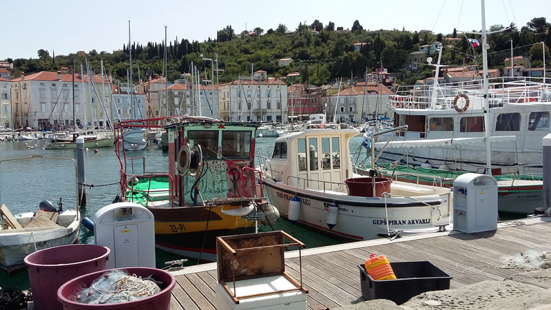 Slowenien - Hafen in Piran 1