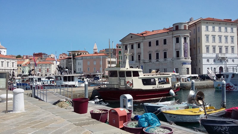 Slowenien - Hafen in Piran 2