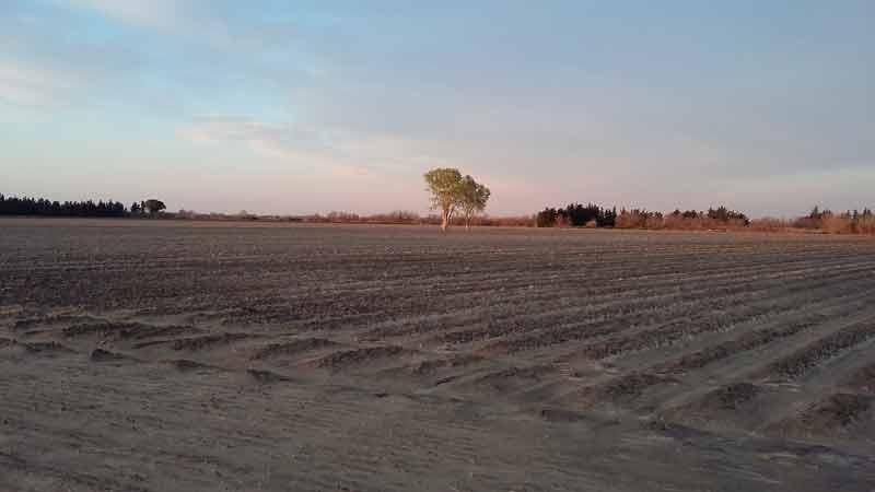 Felder in der Gegend um Astouin