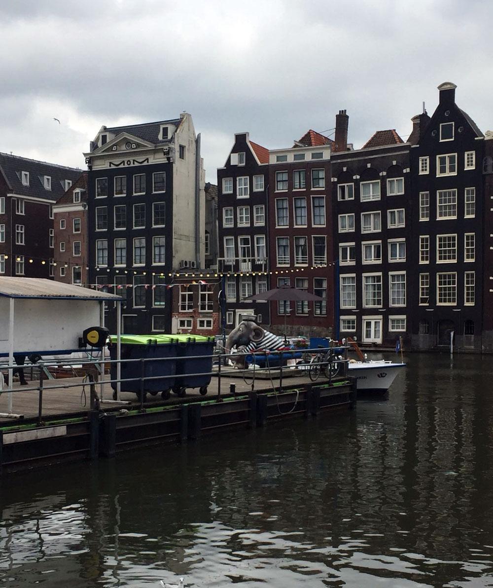 Elefantenskulptur auf dem Anlegesteg für Sportboote in der Nähe des Bahnhofs Amsterdam Centraal