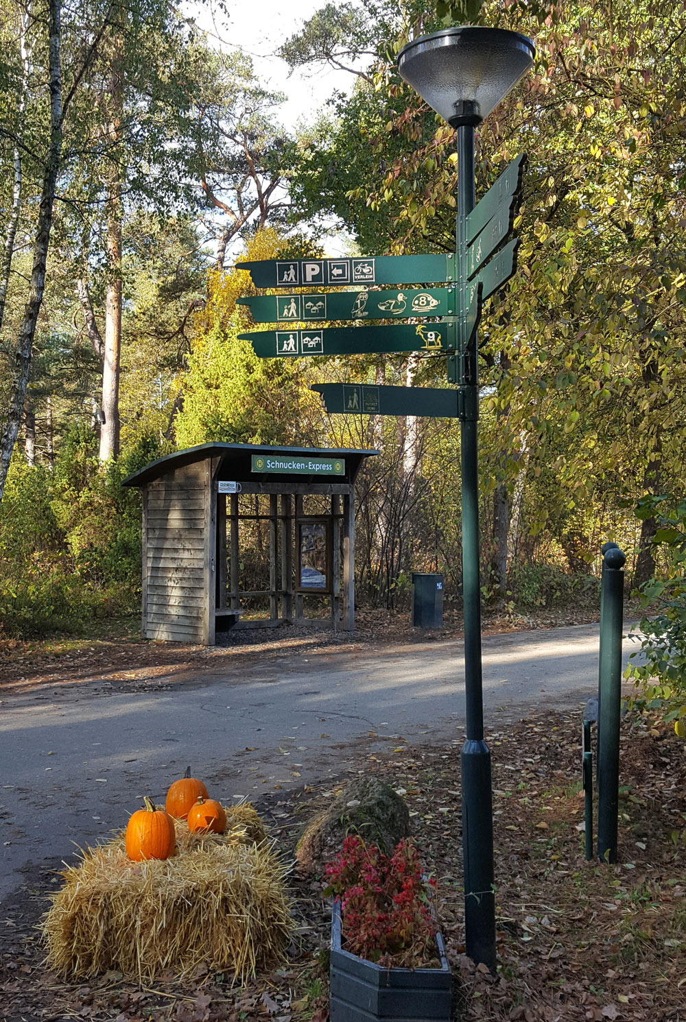 Beschilderung und eine Schnucken-Express Haltestelle im Centerpark Bispinger Heide