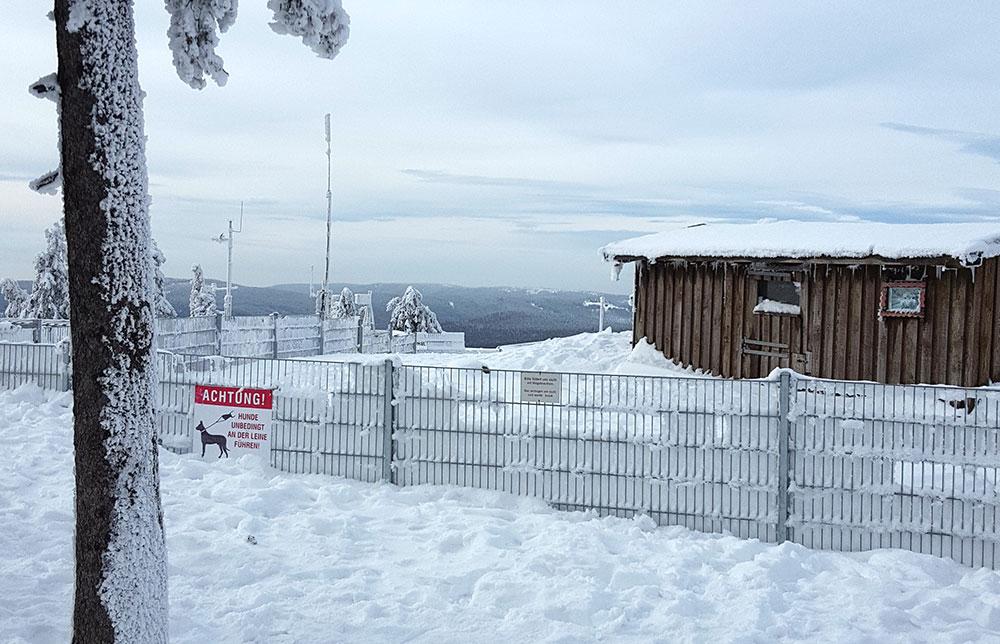 Wurmberg - Streichelzoo im Winter