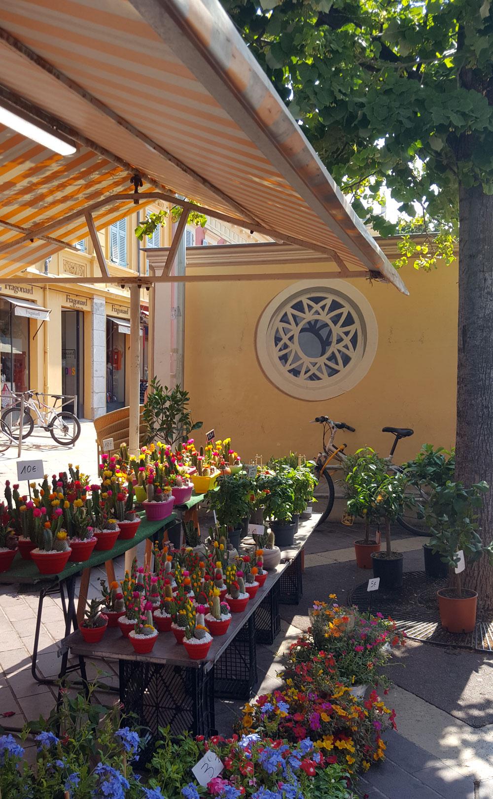 Blumenstand auf dem Markt In der Cours Saleya