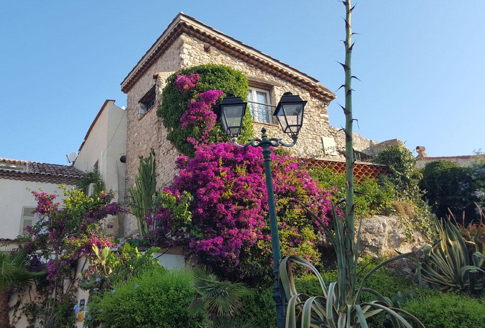 Typisches mit Blumen bewachsenes Altstadthaus