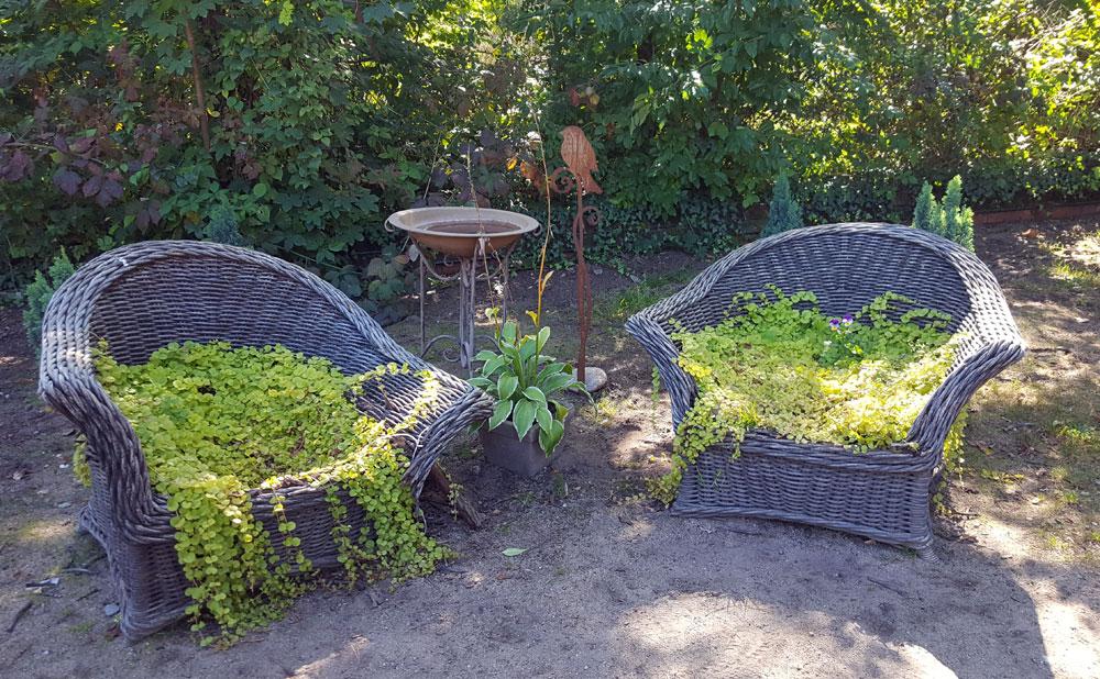 Bepflanzte Korbsessel - Auffällige Dekoration direkt nach dem Einlassdrehkreuz