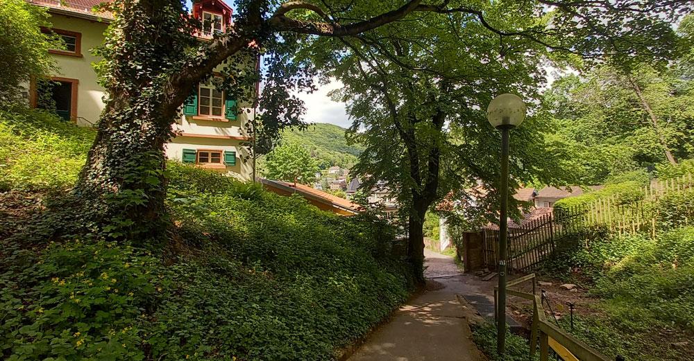 Abstieg vom Schloss durch Wald und Wiesen in die Altstadt