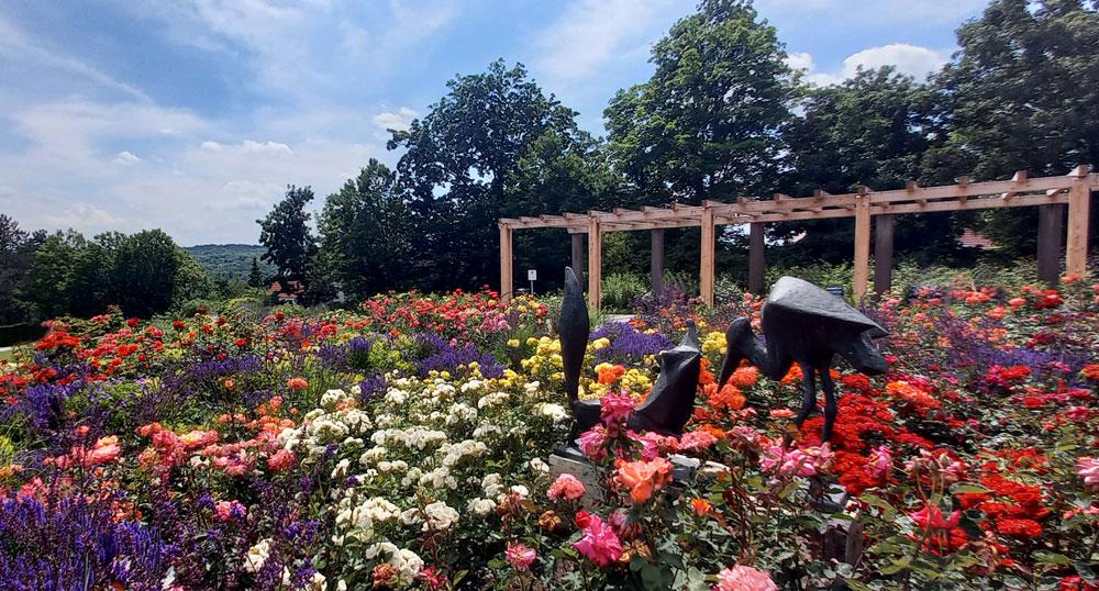 Der Rosengarten im egapark