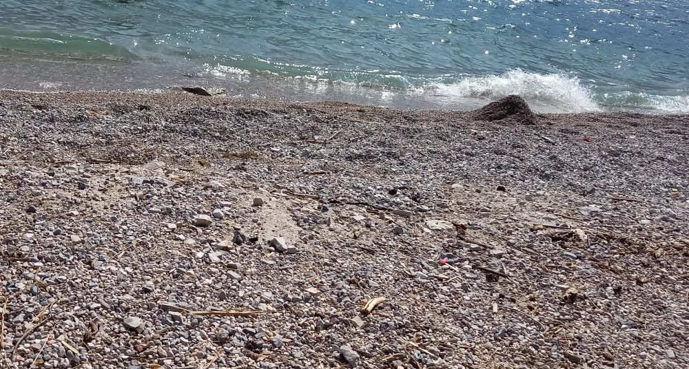 "Kiesstrand ""Spiaggia Cola"""