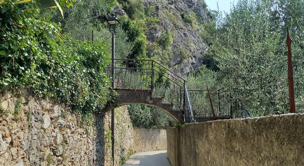 keine Treppenbrücke in den Olivenhainen