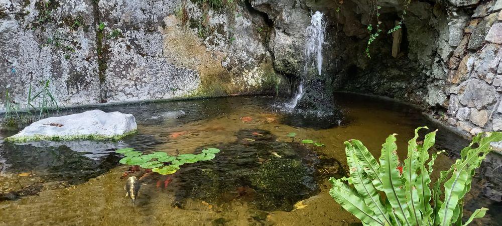 Teich mit Koi Karpfen in einer Felsengrotte im botanischen Garten des Parks